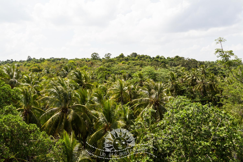 un été australien australie voyage singapour palau ubin