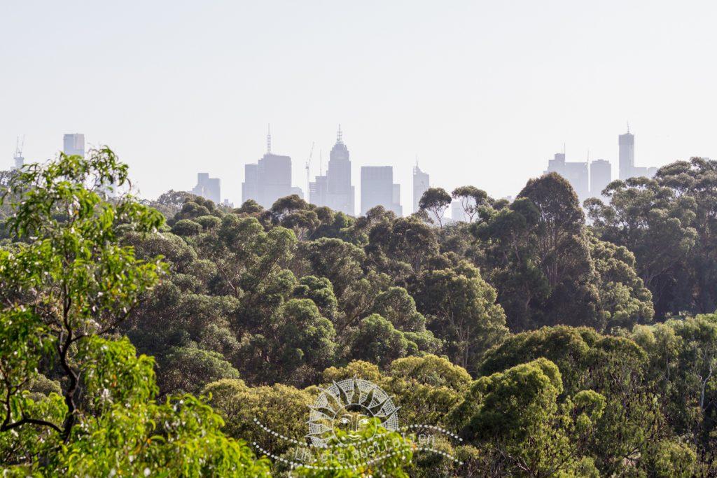 un été australien australie voyage melbourne victoria
