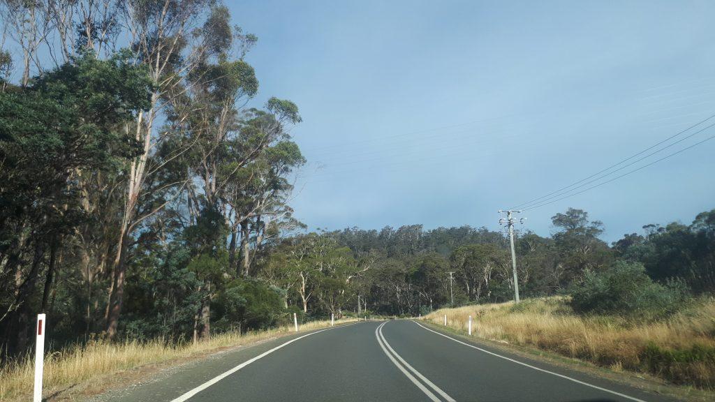 un ete australien tasmanie australie
