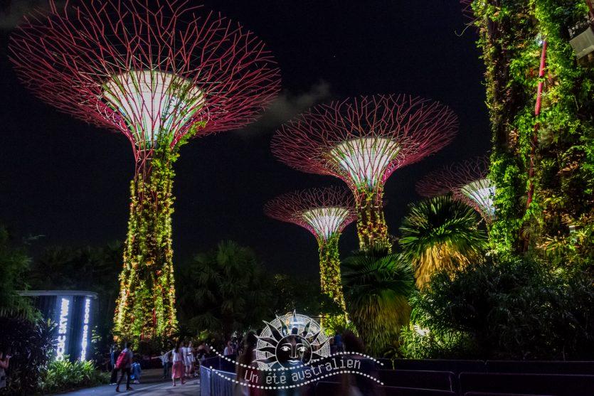 un été australien australie voyage singapour marina bay garden by the bay